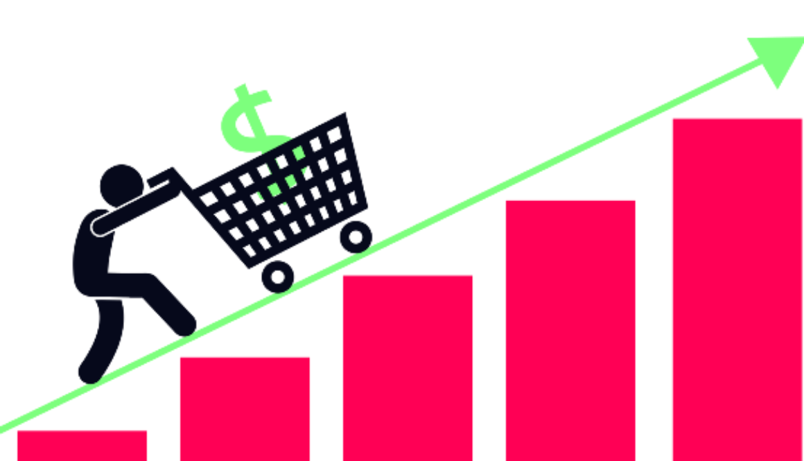Get the perfect revenue for your e-commerce company