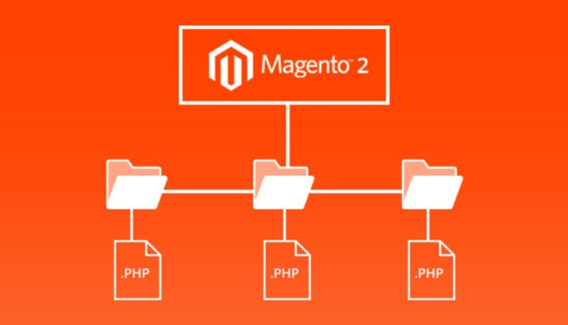 Magento Trends to Pedal to the Metal